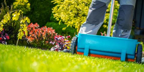 When Should You Start the Lawn Fertilization Process?, Creve Coeur, Missouri