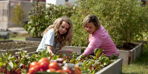 What's the Difference Between Organic & Natural Farming?, St. Louis, Missouri