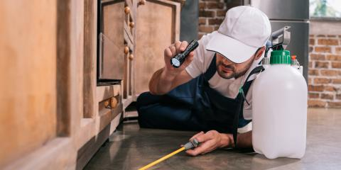 5 Pest Control Tips for Summer, St. Louis, Missouri
