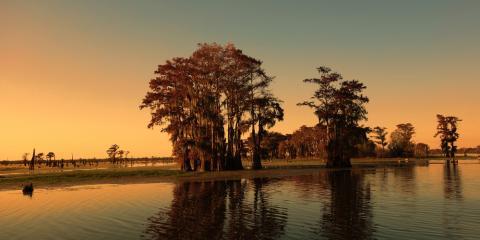 4 Upcoming Events in St. Martin Parish, St. Martinville, Louisiana