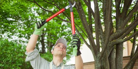 4 Roof Maintenance Tips, St. Paul, Minnesota