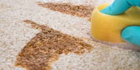Stain Removal 101 With Rockwell's Carpet Cleaning Experts, Gold Hill, North Carolina