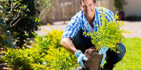 Stamford's Leading Lawn & Garden Equipment Supplier Lists 3 Benefits of Good Landscaping, Stamford, Connecticut