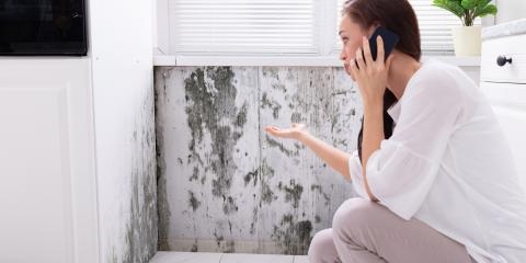 How Your HVAC System May Be Spreading Mold, Staten Island, New York