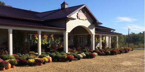 CLOSED - Labor Day & Weekly Specials, Byron, Wisconsin
