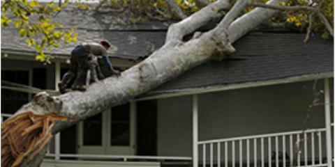 Preparing Your Home for Restoration After Storm Damage, Lexington-Fayette Central, Kentucky