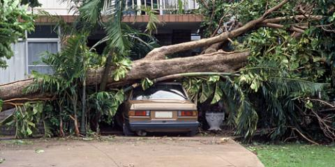 Storm Damage Caught You Off Guard? 6 FAQs to Help You Start Repairs , Jeffersonville, Indiana