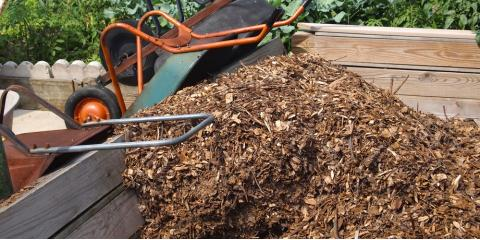 3 Mulch Service Tips to Keep Your Yard in Great Condition, Stuarts Draft, Virginia