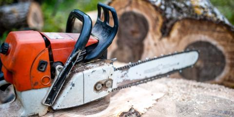 How Stump Grinding & Removal Differ, Marshan, Minnesota