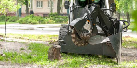 Why You Should Consider Stump Grinding for Your Property, Waialua, Hawaii