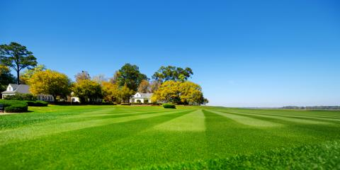 Why Hydro Seeding Is the Right Choice for Your Lawn, Suffield, Connecticut