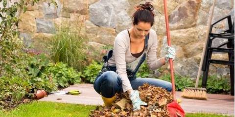 3 Top Winter Landscaping Tips, Sugar Land, Texas