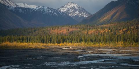 Summer Teen Travel Program Offers 5 Alaskan & Hawaiian Adventures, White Plains, New York