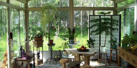 3 Beautiful Plants Perfect for a Sunroom , East Rochester, New York
