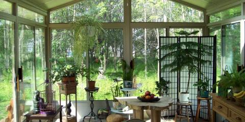 the 5 best plants to grow in your sunroom east rochester new york