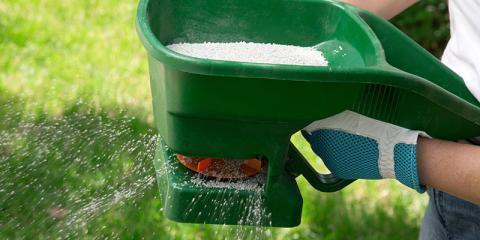Top 4 Fertilizing Tips for Expert Lawn Care, Eldersburg, Maryland