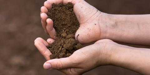 Comparing Screened & Unscreened Topsoil, Victor, New York