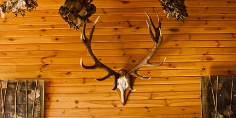 Does Your Mount Need a Makeover? Your Local Taxidermist Can Help, Loveland, Ohio