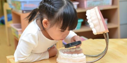 Dentist For Kids Offers 3 Tips to Help Children Overcome Their Fear of the Dentist, Ewa, Hawaii