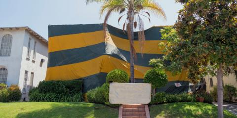 Tent Fumigation vs. Spot Treatments, Wailuku, Hawaii