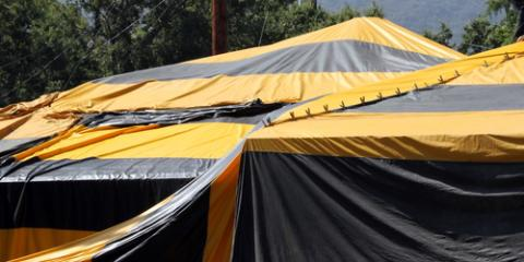 Planning a Tent Fumigation? Hilou0026#039;s Experts Share 3 Tips to Prepare & Planning a Tent Fumigation? Hilou0027s Experts Share 3 Tips to Prepare ...