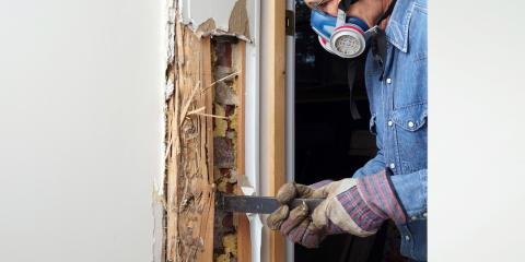 How to Know If Your Home Needs Termite Treatment, Sevierville, Tennessee