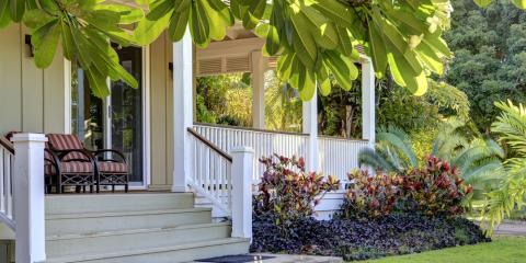 Why Do Termites in Houses Warrant Immediate Action?, Hilo, Hawaii