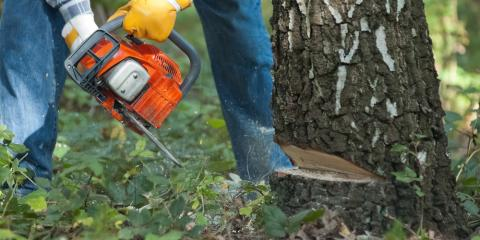 3 FAQs About Land Clearing & DIY Tree Removal Services, Henrietta, New York