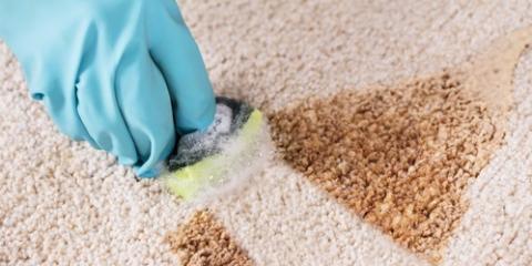 5 Ways Commercial Carpet Cleaning Benefits Your Business, Texarkana, Arkansas