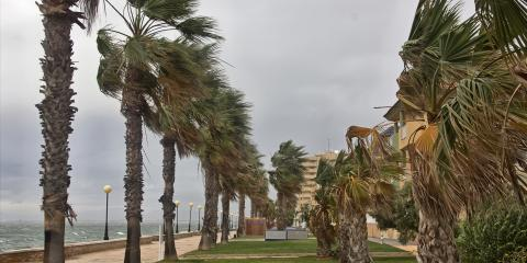 3 Ways to Get Your Condo Ready for Hurricane Season, Tampa, Florida