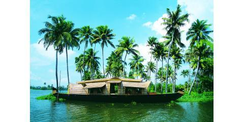 The Top 7 Things to do in Kerala With The Great Indian Adventure's Custom Trips, Manhattan, New York