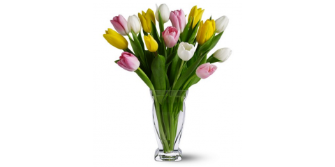 Give the Gift of Gorgeous Spring Flowers in Branford, Branford Center, Connecticut
