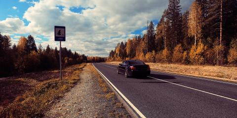 5 Ways to Stay Safe While Driving in Fall, Thomasville, North Carolina
