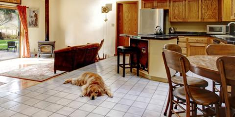 How to Keep Your Kitchen Tiles Clean With Pets in the House, Middletown, New Jersey