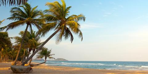 Why Late Fall Is the Perfect Time to Buy a Timeshare, Honolulu, Hawaii