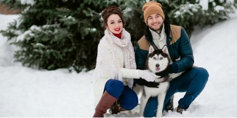 Animal Care Experts Share 3 Tips to Keep Dogs Healthy During Winter, Montgomery, Ohio