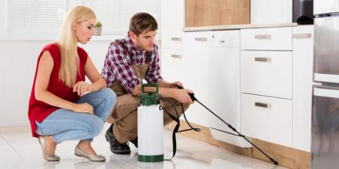 5 Ways to Keep Pests Away During the Colder Months , 2, Tennessee