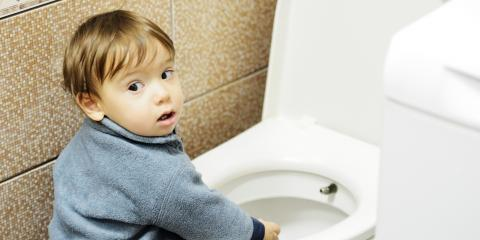 How to Curb a Flush-Happy Toddler, Wawayanda, New York