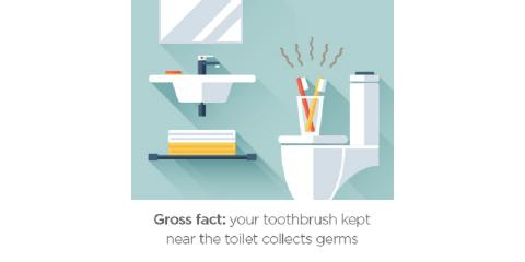 Keep your toothbrush away from the toilet!, Lewisburg, Pennsylvania