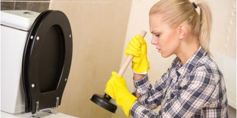 Toilet Repair Experts Explain 3 Reasons You May Have a Clog, Honolulu, Hawaii