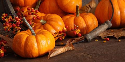 3 Reasons to Eat More Pumpkin, Byron, Wisconsin