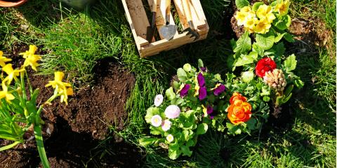 4 Factors to Look for in Quality Topsoil, Burlington, Kentucky