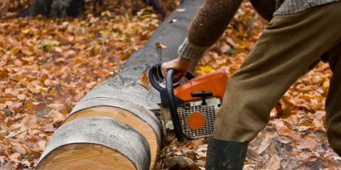 Top 3 Chainsaw Safety Tips, Dothan, Alabama