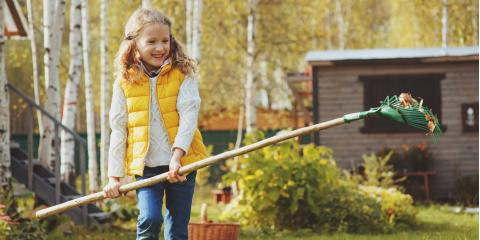 Top 4 Fall Lawn Care Tips, Saratoga, Wisconsin