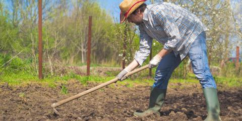 What Is the Best Soil for Vegetable Gardens?, Burlington, Kentucky