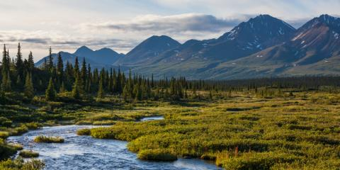 4 Must-See Destinations in Denali National Park, Healy, Alaska