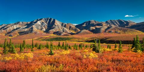 What's a Good Time of Year to Visit Denali National Park?, Healy, Alaska