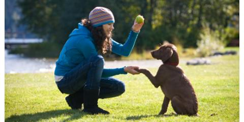How to Train Your Human (for dogs) - Socialization Part I, Middletown, Ohio