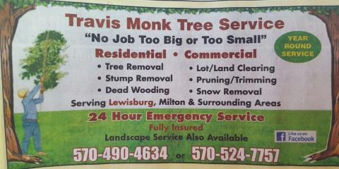 Travis Monk Tree Service, Tree & Stump Removal, Services, Milton, Pennsylvania
