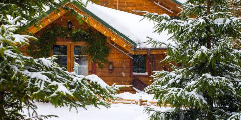 5 Common Tree Problems in Winter & How to Prevent Them, Anchorage, Alaska